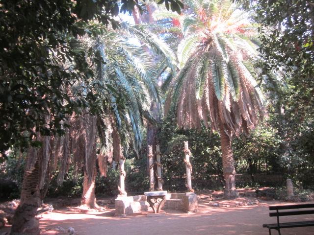 A hidden paradise inside Lopud island
