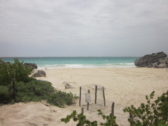 Protected Beach Area