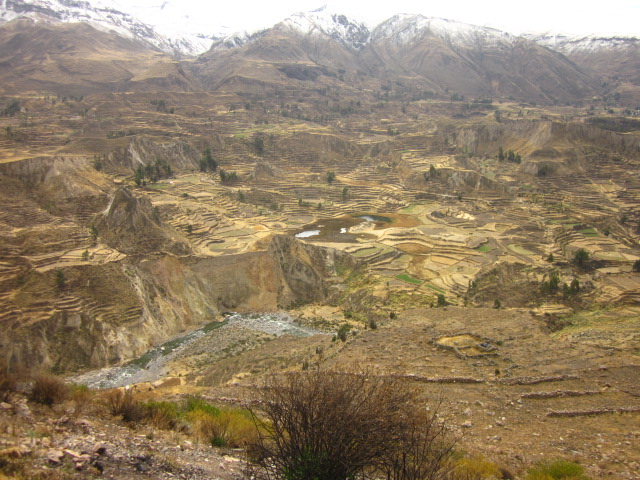 Pre-Inca terraces