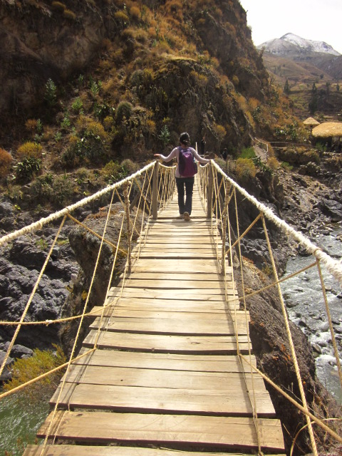 Kinda scary hanging bridge en route to the hot springs.  Maximum capacity was 2 people at a time, spaced out..we did not test this limit.