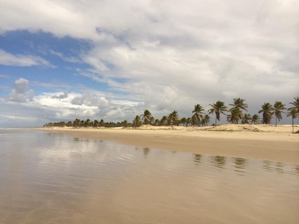 Coastline of Mangue Seco