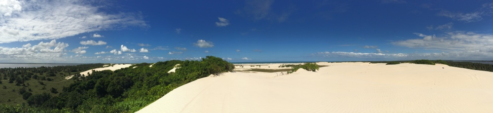 At the top of the sand dunes